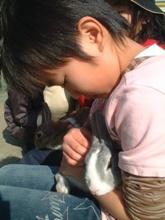 チヒロとウサギ