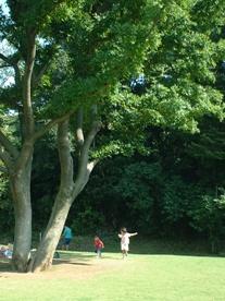 丘の公園にて