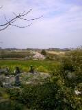 09深堀墓地からの桜