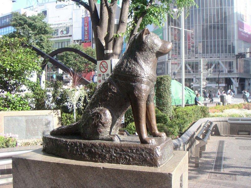 http://image.blog.livedoor.jp/takekan/imgs/7/3/73068ba1.jpeg