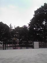 府中競馬場