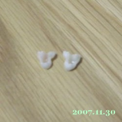 2007/11/30_1