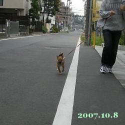 2007/10/8_2