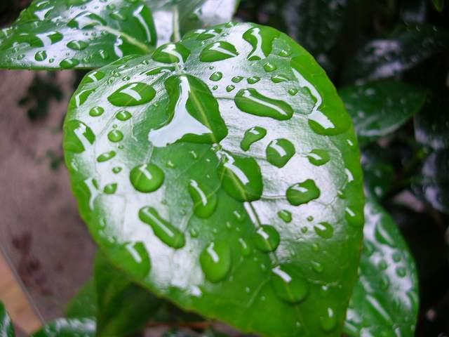 http://image.blog.livedoor.jp/teru197618/imgs/f/7/f7d49f49.jpg