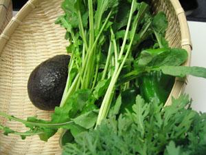 Oisix(おいしっくす)の有機野菜