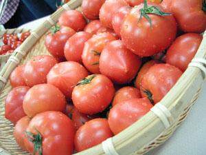 Oisix(おいしっくす)のトマト