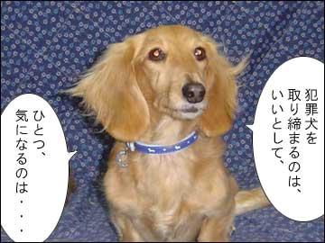 犬にも刑事罰?-4コマ