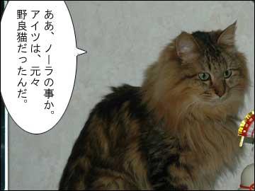 ピアノを弾く猫-2コマ