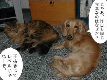 省エネ投稿-4コマ