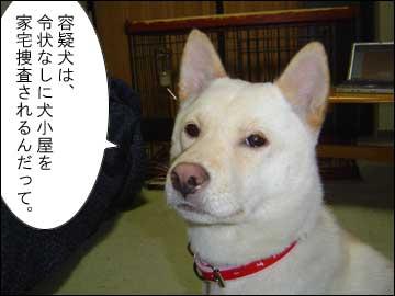 犬にも刑事罰?-3コマ