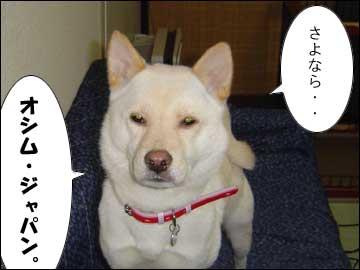 星野ジャパン-5コマ