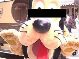 ファンダジー犬