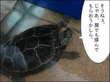 肩モミ-3コマ