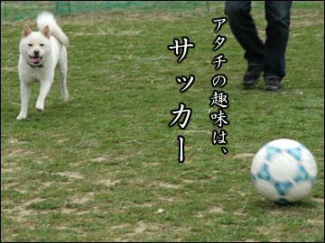 サッカー大好き-1コマ
