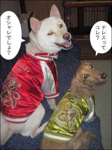 お揃いのドレス-6コマ