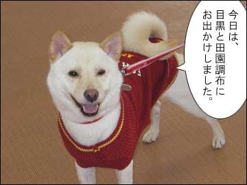 お揃いのドレス-1コマ