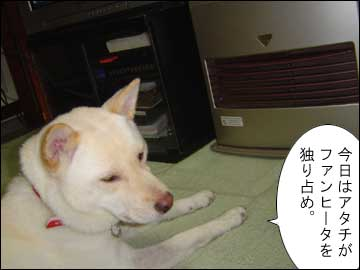 暖かい部屋-1コマ
