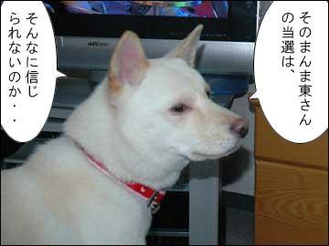 そのまんま東氏、当選-5コマ