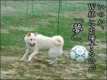 サッカー大好き-4コマ