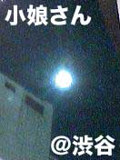 小娘さんの月