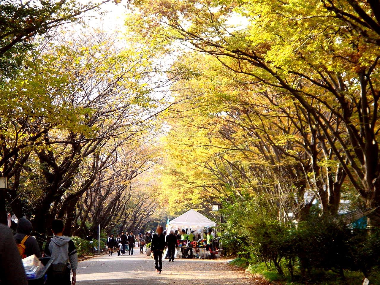 千葉大学 に対する画像結果