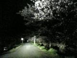 05-04-11_19-34.jpg