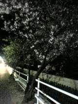 05-04-09_20-20.jpg