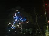 桜花台1(木)・2006
