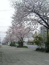 05-04-10_12-561.jpg