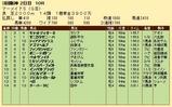 第33S:06月4週 マーメイドS 成績