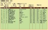 第33S:09月3週 セントウルS 成績
