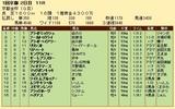 第33S:01月1週 京都金杯 成績