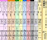 第17S:11月1週 武蔵野S