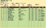 第28S:10月4週 菊花賞 成績