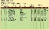 第29S:09月3週 京成杯AH 成績