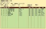 第27S:06月2週 仏ダービー 成績