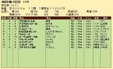 第30S:10月4週 菊花賞 成績