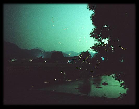 http://image.blog.livedoor.jp/worldkigo/imgs/b/4/b49789e8.jpg