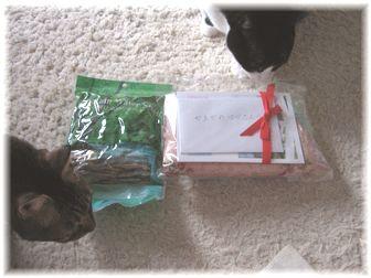 プレゼント 袋の中