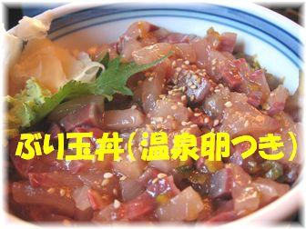 ぶり玉丼(温泉卵つき)