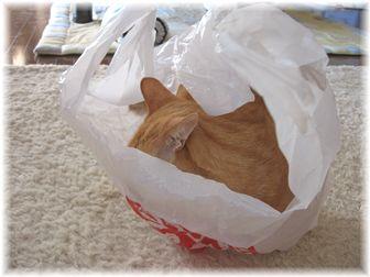 袋とチャンちゃん 2