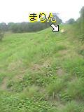 05-07-16_10-01.jpg