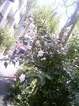 9330f84a.jpg