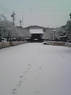 国府宮神社-1