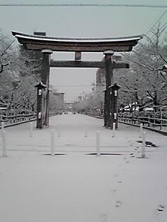 国府宮神社-2