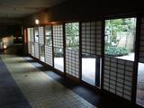 tsubaki20050411_4