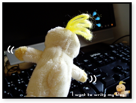 ブログを書きたいのにーっ!
