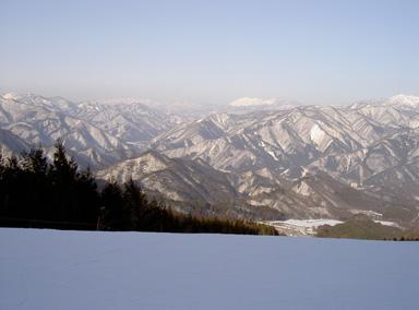 ski1t.jpg